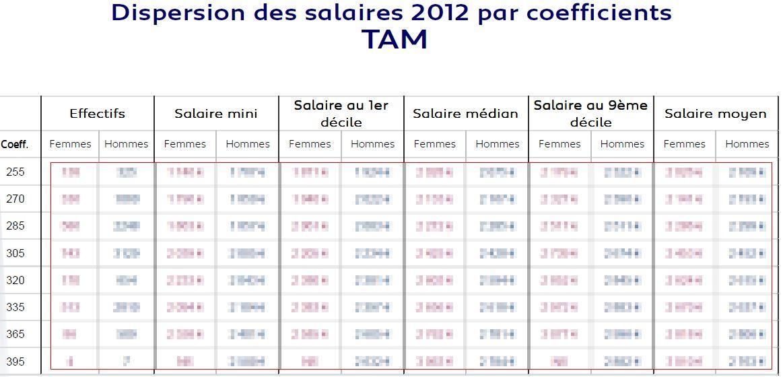 Bilan PCA TAM 2012